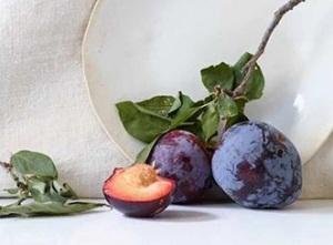 Alder-Yarrow-wine-blogger-plums-10004600